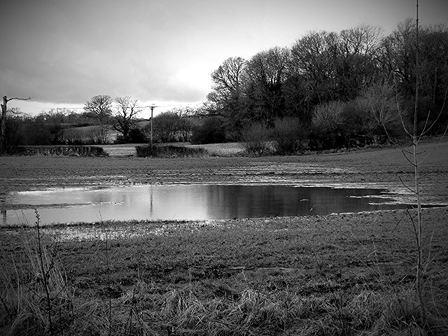 flooded_field_bw