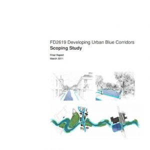 Cover of developing urban blue corridors